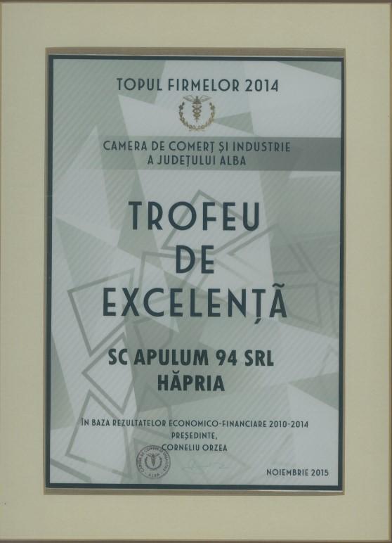 Topul Firmelor - 2014 - Trofeu de excelenta
