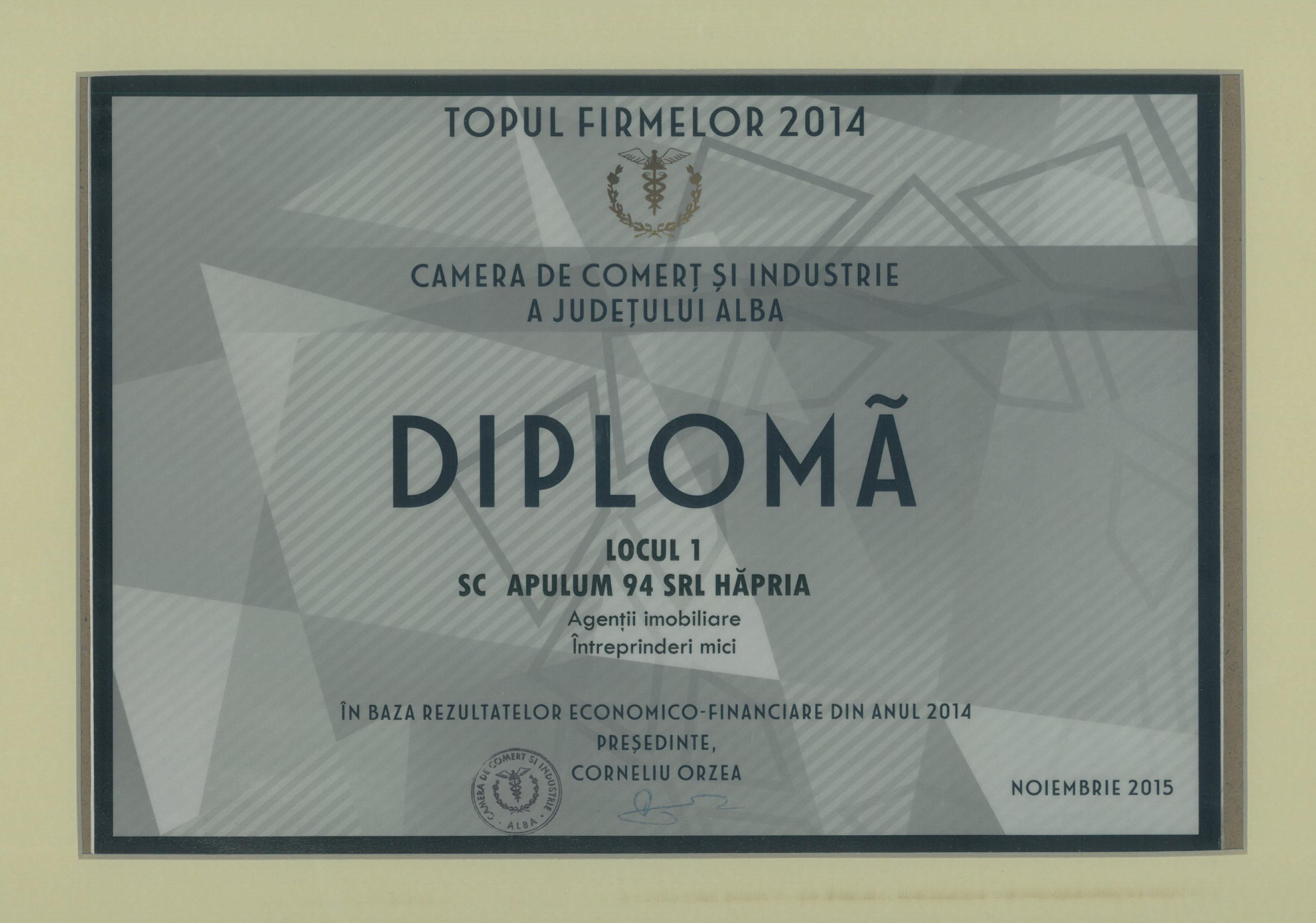 Top pentru Romania Intreprinderi Mici - 2015
