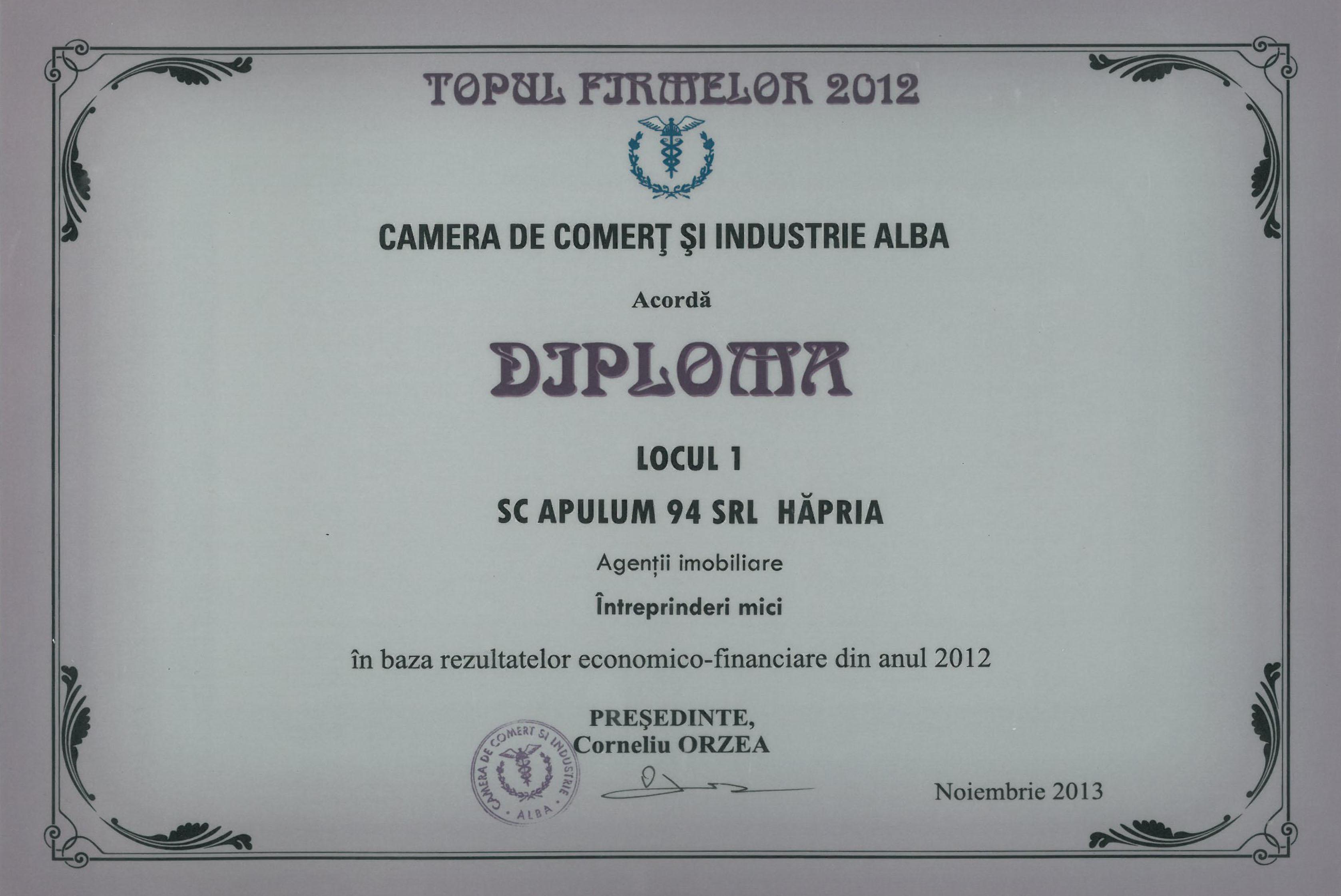 Camera de Comert si Industrie Alba – 2013