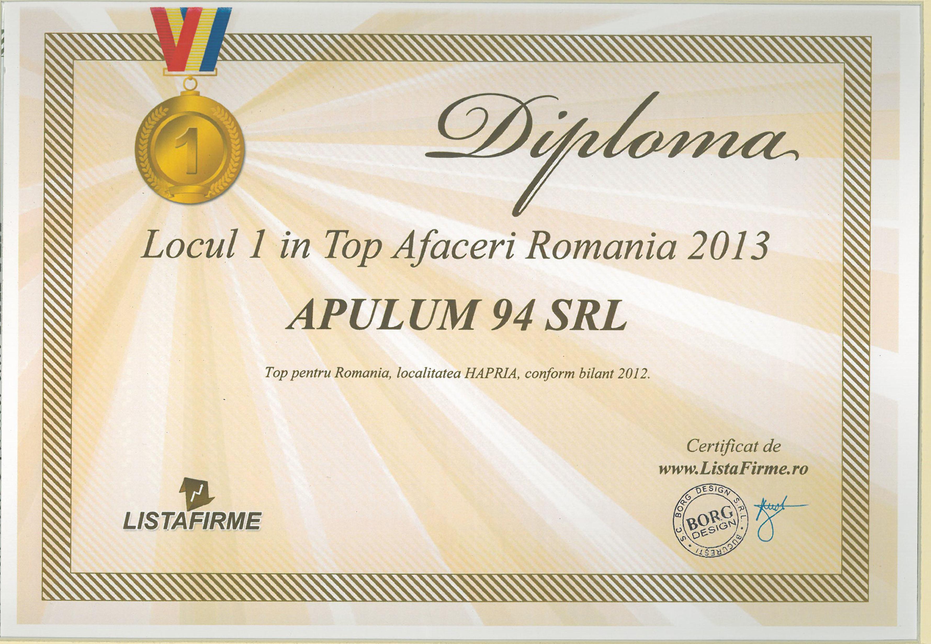 Top Afaceri Romania – 2013